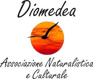 diomedea